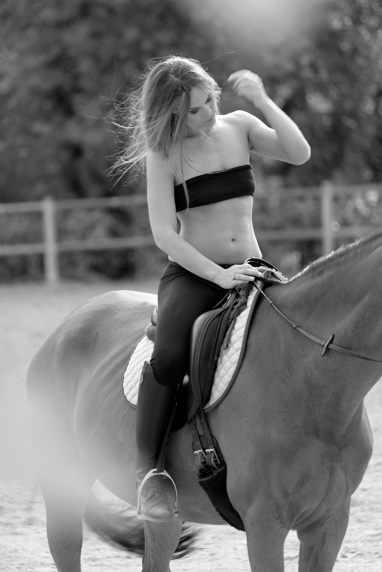 Evelin horse